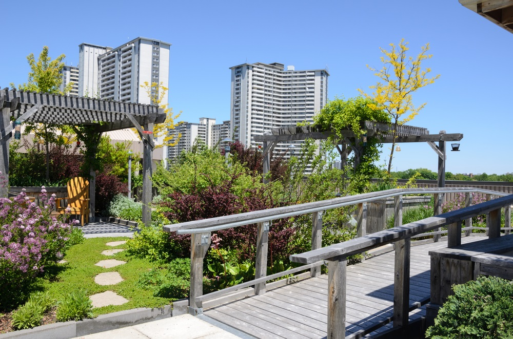 Celebrate a Green Roof