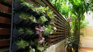 Challenges of Creating Vertical Gardens