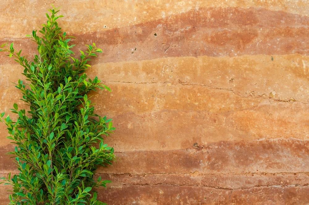 How to Use Natural Building Supplies to Get that Earthy Flair