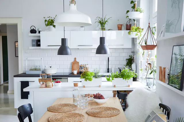 10 Ways to Display Plants in the Kitchen