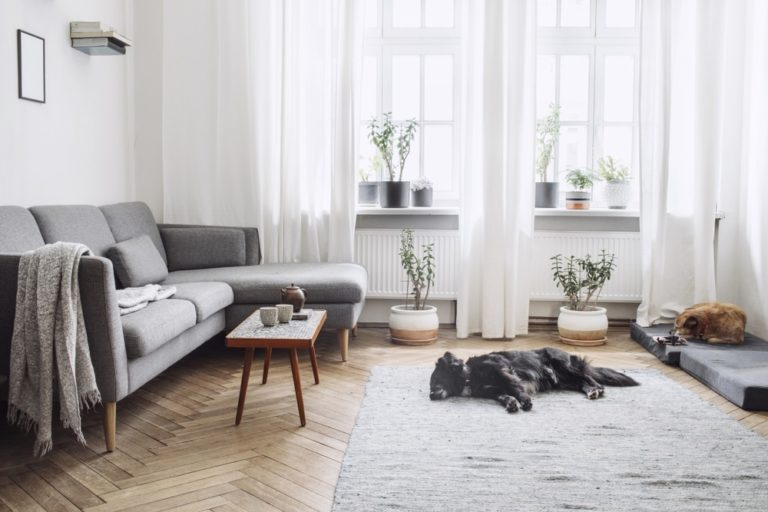 nordic interiors How the Modern Scandinavian Style House Evolved 3 Cool & Lovely Interiors that are as Popular as Mid-Century Modern Design