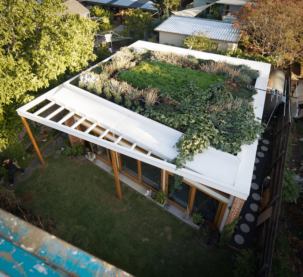 sustainable house green roof